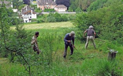Zweiter Einsatz am Burghölzliwaldrand