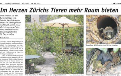 Züribergzeitung – Trittsteingartenbericht