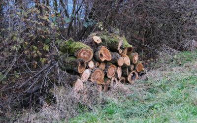 Igel-Residenzen aus Bruchholz